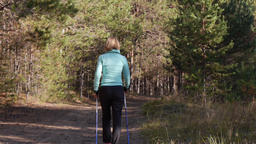 Woman practicing Nordic Walking in an autumn forest, she's walking away from the Live Action