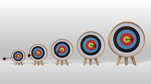 One arrow hitting exactly in the several targets,increasingly success project Animation