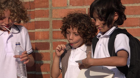 School Boys Or Students Stock Video Footage