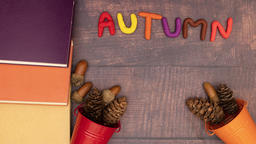 Autumn title come on the table surrounded with books in fall colors and pine cones - Stop motion Animation
