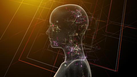 AI, artificial intelligence digital network technologies 19 1 Human 1C red 4k Animation