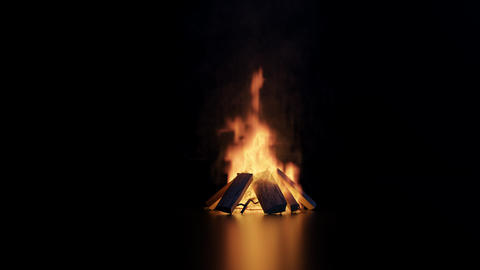 animation of bonfire with sparks and particles on glossy…, Stock Animation