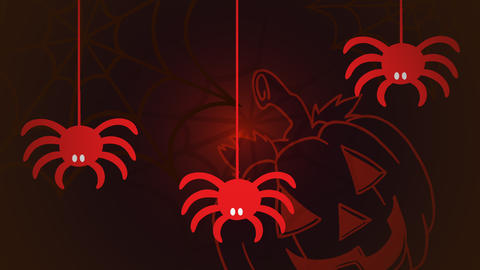 Halloween animation with the spiders and pumpkin on red background Videos animados