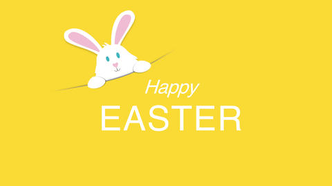 Animated closeup Happy Easter text and rabbit on yellow background Animation