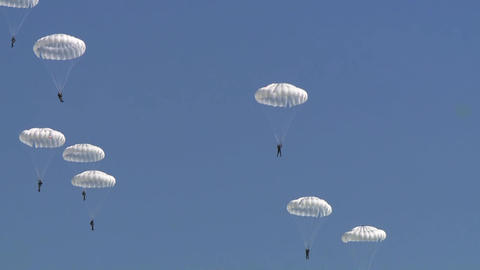 Disclosure of the parachute in the sky when jumping from an airplane, a detachment of parachutists Live Action