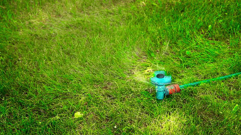 Water sprayer on the lawn in motion on a hot summer day HD Live Action