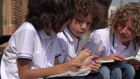 Elementary School Boys Writing Footage