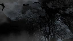 Bats flying through graveyard Footage