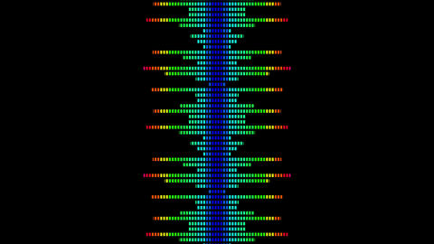 Colorful wave lines. Sound wave from equalizer. Digital pulse wave concept. Futuristic loop on black Videos animados