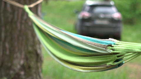 Colorful cane hammock fixed to two pines in a pine forest in summer Footage