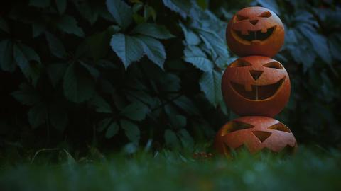 Scary symbols of Halloween - Jack-o-lanterns Footage