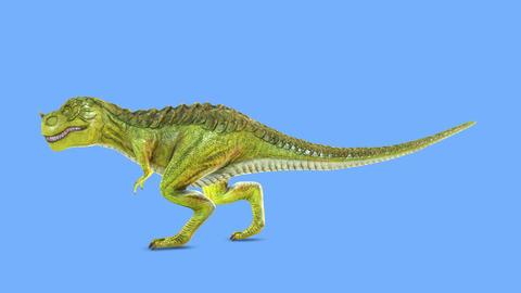 Dinosaur T-REX Animation