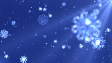 Snow flakes falling loop animation design element with blue background After Effects Project