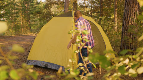 Tourist man setting camping tent in sunny forest. Traveling man checking tourist Live Action