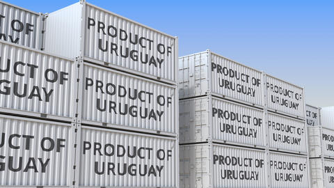 Containers with PRODUCT OF URUGUAY text in a container terminal, loopable 3D Live Action