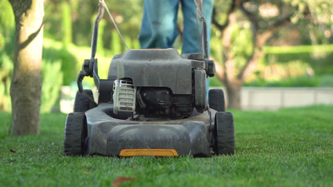 Lawn mower cutting the grass. Gardening activity Live Action