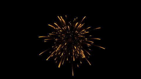 Firework bursting sparkle Isolated gold colorful night fire, beautiful explosion Footage