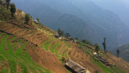 Farming Himalayas Nepal mountains HD video. Aerial village rice terraces valley  Footage