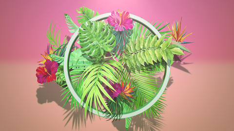 Closeup tropical flowers and leaf, summer background Animation
