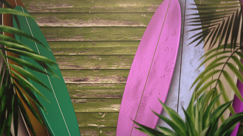 Closeup surfing boards and tropical leaves, summer background Videos animados