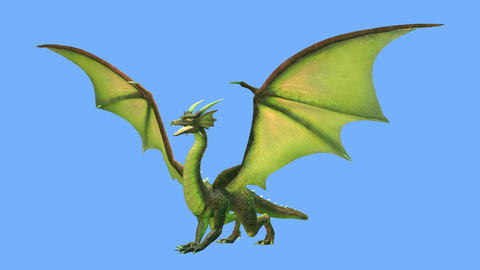 Dragon Videos animados