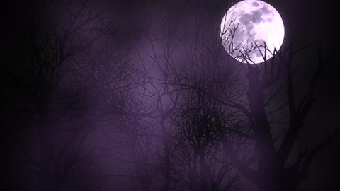 Mystical animation halloween background with dark moon and clouds Animation
