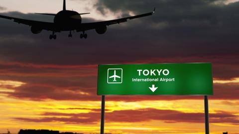 Plane landing in Tokyo Japan Live Action