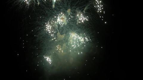 Fireworks On Black Sky Footage