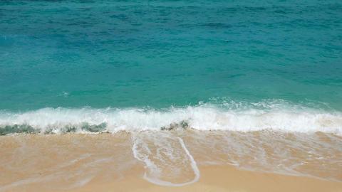 Tropical beach scenery Footage