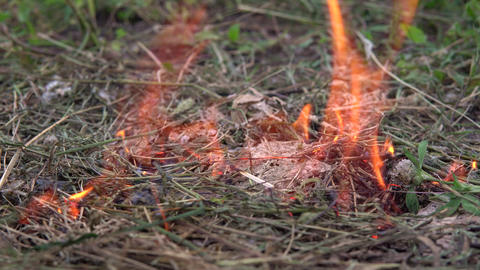 The thrown match set fire to the grass. A man threw a match on the dry grass Live Action