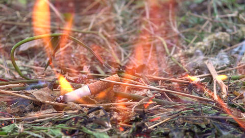 The thrown cigarette set fire to the grass. A man threw a cigarette on the dry Live Action