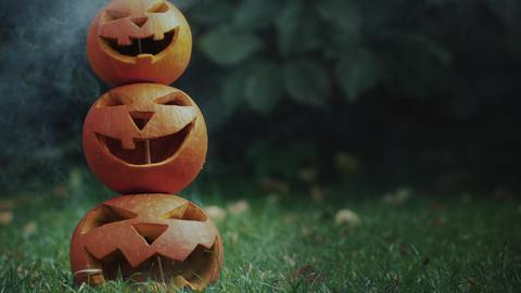 Halloween jack-o-lanterns on the grass Footage