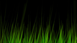 BG GRASS 004 25fps Stock Video Footage