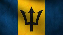 Barbados flag Animation