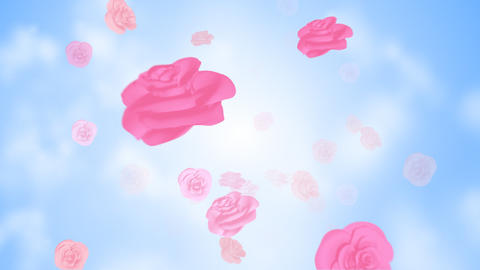 The rose which flies in the sky Stock Video Footage