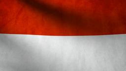 Indonesia flag Animation
