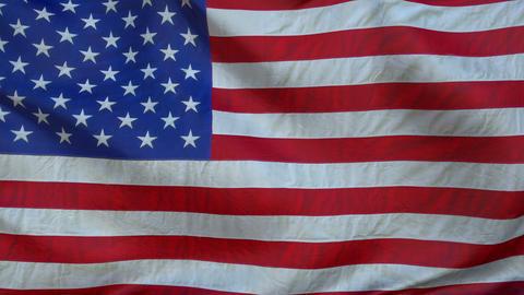 USA flag-2016 Animation
