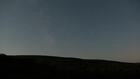 Night Sky And Forest Timelapse Of Milky Way Footage