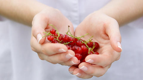 Redcurrant fruits in woman's hands Footage