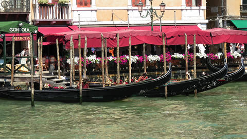 The most famous tourist attraction in Venice - the Gondola service Live Action