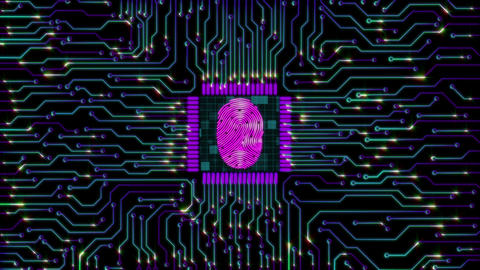Fingerprint electronic circuit board (Loop) Animation