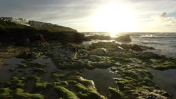 Vertical pan of tide going out at sunset to reveal rock pools and seaweed Footage