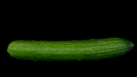Water is sprayed on a cucumber. On a black isolated background Footage