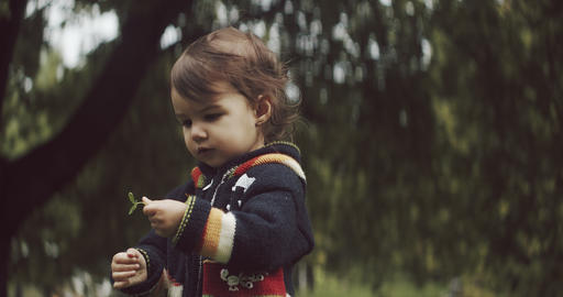 Cute baby girl exploring the outdoors in the early fall Live Action