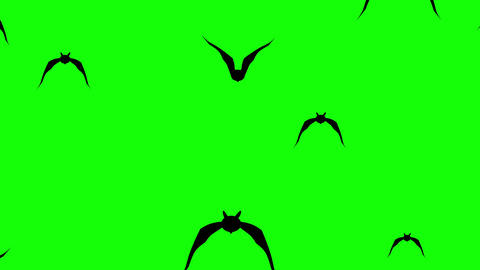 Swarm of spooky bats flying against green background. Halloween themed background, ready to use with Animation