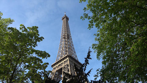 Eiffel Tower among Trees Live Action