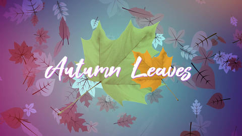 Autumn Leaves After Effects Template
