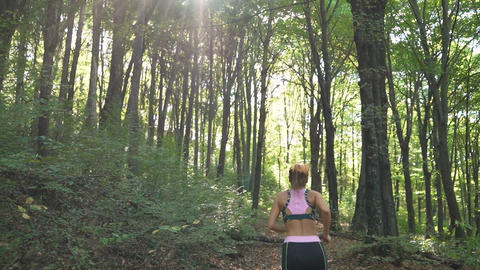 Morning Sun Rays Shine On Fit Female Jogger, Running In the Forest Footage