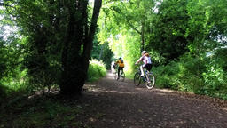 Mature cyclists on a tree lined country path Footage