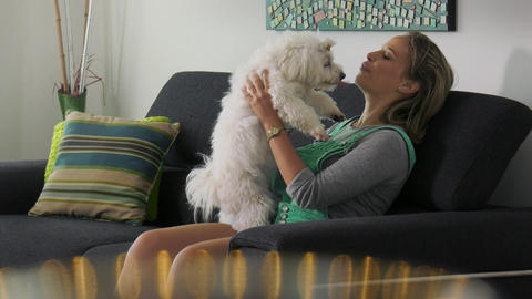 Woman Dog Owner Training Pet To Sit And Wait Footage